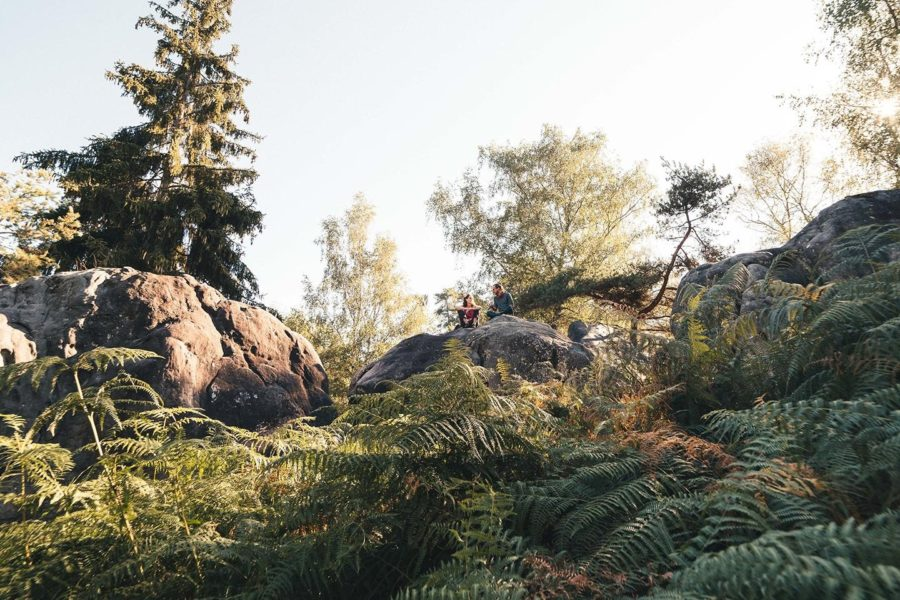 Les rochers de Fontainebleau